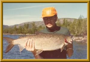 World Record Lake Whitefish